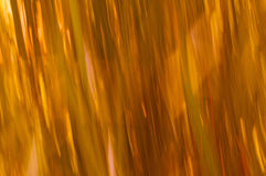 De lijnen van het grasonduidelijke beeld met sinaasappelen en geel Royalty-vrije Stock Fotografie