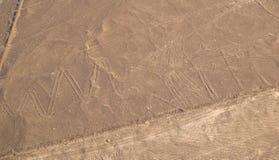 De Lijnen van Nazca stock foto's