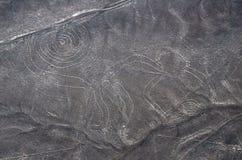 De Lijnen van Nazca - Aap - LuchtMening stock afbeelding