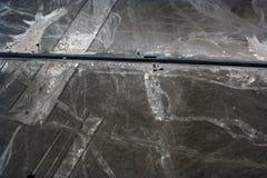 De Lijnen van Nazca en Panamerikaanse Weg royalty-vrije stock afbeeldingen