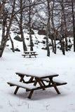 De lijst van de picknick in een park Stock Fotografie