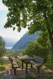 De lijst van de picknick onder boom Stock Foto