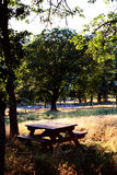 De Lijst van de picknick op Gebied Stock Afbeeldingen