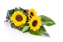 De lijstdecoratie van zonnebloemen Stock Afbeelding