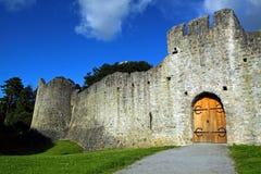 De Limerick Ierland van Co. van het Kasteel van Adare Royalty-vrije Stock Foto