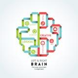 De linker en juiste illustratie van de hersenenfunctie Stock Foto
