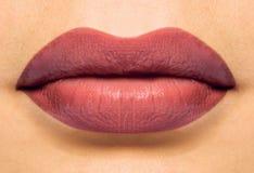 De lippen van Coulored Stock Afbeeldingen