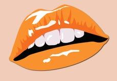 De Lippen van de kleur Stock Illustratie