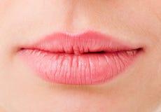 De lippen van vrouwen zijn zeer dicht Royalty-vrije Stock Afbeelding