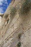 De loeiende Muur, Jeruzalem, Israël Stock Foto's