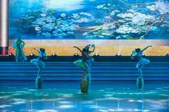De lofprijzing van Dag van de Arbeid van de peren de bloem-ballet-algemene Vakbond ` s toont Stock Foto's