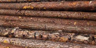 De logboeken worden omhoog opgestapeld, het hout stock afbeelding