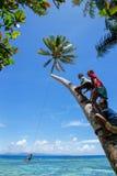 De lokale jonge geitjes die op een kabel slingeren slingeren in Lavena-dorp, Taveuni I Stock Afbeeldingen