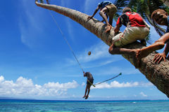 De lokale jonge geitjes die op een kabel slingeren slingeren in Lavena-dorp, Taveuni I Stock Fotografie
