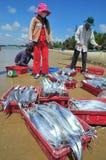 De lokale vissers verkopen hun vissen aan de plaatselijke bewoners en de toeristen op het Lagi-strand Stock Afbeelding