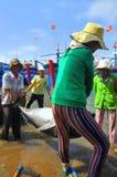 De lokale vissers vervoeren tonijnvissen van hun schepen aan de brancard en brengen het aan het het testen huis in seapor van Tuy Stock Foto's