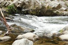 De lokale vlekken van San Lorenzo River in santa cruz Californië op een Spaanse pepersmiddag stock afbeelding