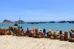 De lokale vrouwen maken hun manden schoon die voor het vervoeren van vissen van de boot aan de vrachtwagen werden gebruikt Royalty-vrije Stock Afbeeldingen