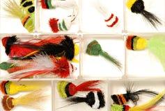 De Lokmiddelen van de Visserij van de vlieg Stock Afbeeldingen