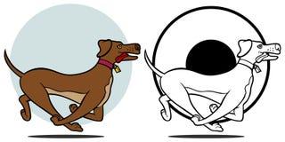De Lopende Reeks van de hond Stock Foto