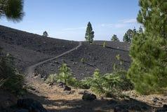 de Los angeles Los palma ruta volcanes Zdjęcia Stock