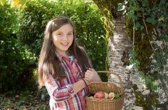 De los jóvenes manzanas de la cosecha del adolescente pre en el jardín Imagen de archivo libre de regalías