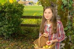 De los jóvenes manzanas de la cosecha del adolescente pre en el jardín Foto de archivo libre de regalías
