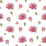 De lotusbloem van de patroonbloem Stock Afbeelding