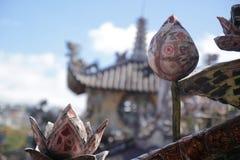 De lotusbloembloemen van Nice in een zonnige dag stock afbeeldingen