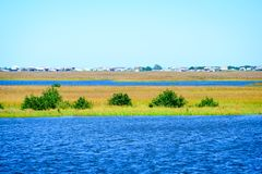 De Louisiana våtmarkerna Royaltyfri Foto