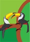De love birds-3 Fotografie Stock