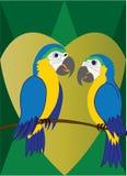 De lovebirds-5 Fotografie Stock Libere da Diritti