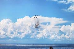 De lucht toont mig-29 Stock Foto
