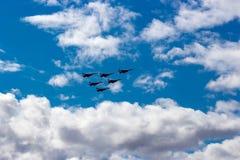 De lucht toont swifts Stock Afbeeldingen