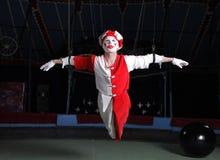 De luchtacrobaat van het circus Stock Afbeeldingen