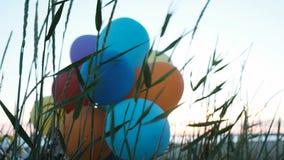 De luchtballons zijn geplakt in het gras op het overzees Ecologie en verontreiniging van aard, huisvuil op de straat stock footage