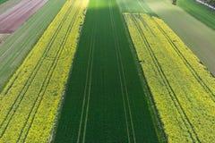 De luchtfoto van het de lentelandschap stock afbeeldingen