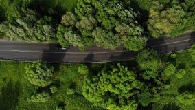 De luchtlengte van weg in groen bos met verscheidene auto's drijft op de autosnelweg Auto's die op asfaltweg berijden in green stock video