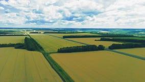 De luchtmening van de hommel voorwaartse motie over landelijk plattelandslandschap stock videobeelden
