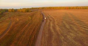 De luchtmening van UHD 4K Mid-air vlucht over gele landelijke gebied en landweg stock video