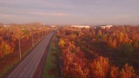 De luchtweg van de meningsweg in de herfstlandschap bos langs de kant van de weg stock video