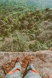 De luifel van lange bomen die een duidelijke blauwe hemel ontwerpen Royalty-vrije Stock Foto