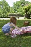 De Lunch van de picknick Stock Afbeeldingen