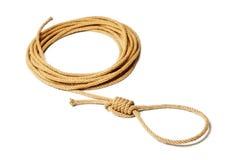 De lus van de kabel royalty-vrije stock afbeeldingen