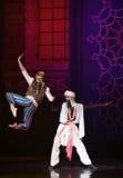 """ de lutte de Nights†de l'""""One mille et un de ballet Photographie stock libre de droits"""