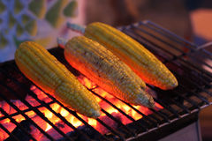 De maïs van Barbique Stock Fotografie