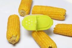 De maïskolf van gekookt graan ligt op een schotel Op een witte achtergrond Stock Afbeelding