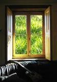 De ma fenêtre Image libre de droits