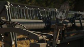 De maaimachine gaat in het gebied de tarwe verzamelen stock videobeelden