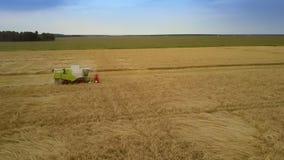 De maaimachine oogst zwaar tarwegewas makend strobroodjes op gebied stock videobeelden